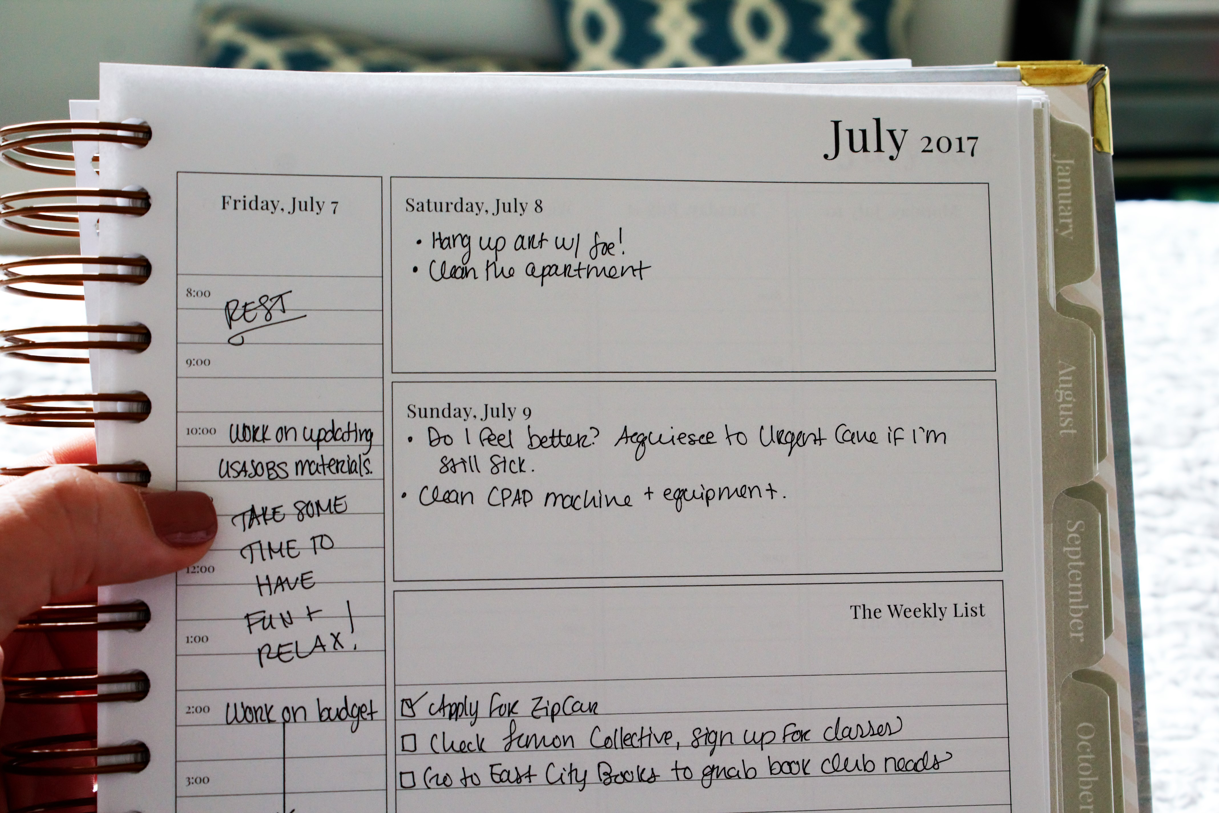 sheplans appointment weekly planner plannerisma