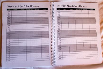 boost planner-27