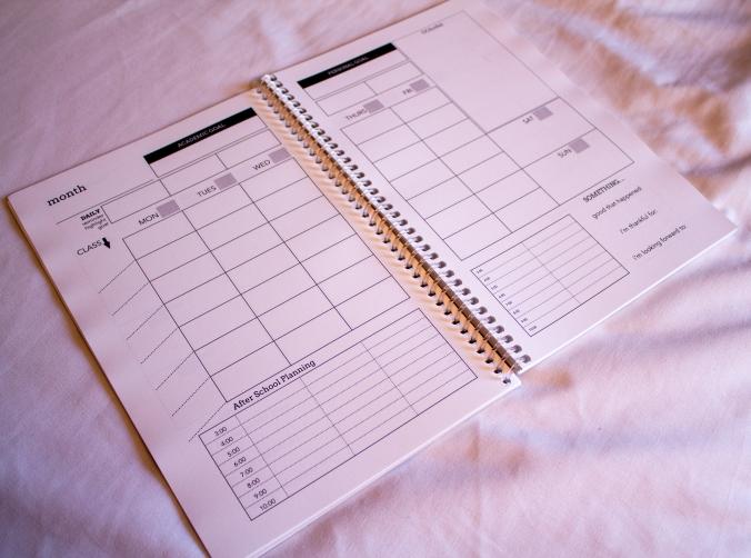 boost planner-9